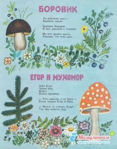 Боровик, Егор и мухомор - прибаутки Прокофьев